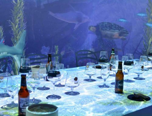 'SALA MAGNA' PLUNGES MADRID INTO AN IMMERSIVE SAN MIGUEL EXPERIENCE
